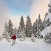 Susi | Vorarlberg