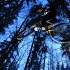 Dave | Bikepark Bad Wildbad